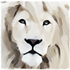 Avatar for whitelion420
