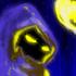 Avatar for ExeLord