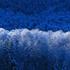 Avatar for BleuZ