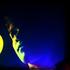 Avatar for terrell_94