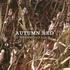 autumnredmusic 的头像