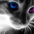 Avatar for TheCatwoman2