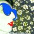 Avatar for Mc_Chester