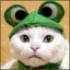 Аватар для ultrabigfrog