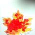 Avatar for orange_09