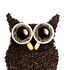 Avatar for coffeeowl