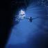 Avatar for viewnok