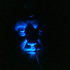 Avatar de sindjiro1