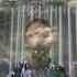 Avatar for poveytom