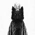 Avatar de Spirit-Wolf